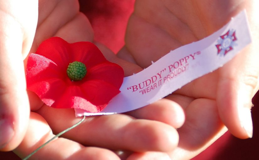 Buddy Poppy Drive – You can still Help!